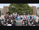 【京大学祭】ニコテラの奇妙な冒険~メインステージで踊らない~【2016】4/4 thumbnail