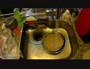 #2 子猫に邪魔されながら味噌を作ってみた thumbnail