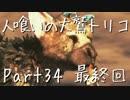 【実況】小さな少年と人喰いの大鷲の物語【トリコ】Part34 最終回