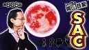 シーサ。の回胴日記_第605話 [by ARROWS-SCREEN] thumbnail