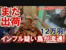 【韓国鳥インフルの恐怖】 陽性判定の養鶏場!12万羽を難なく出荷! thumbnail