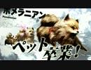 弱肉強食の東京がヤバイ!!【TOKYO JUNGL