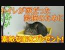 愛猫の誕生日に素敵な家をプレゼントしたい!