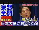 【韓国が勝手にホルホル】 日本大使が帰ってくる!安倍首相に...