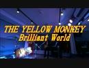 Brilliant World / THE YELLOW MONKEY