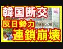【韓国崩壊最新】韓国断交でドイツが崩壊!反日勢力が連鎖崩壊へ!