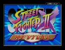 GBA格闘ゲーム ストリートファイターIIXリバイバル