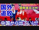 【韓国人を国外追放】突然言われても困るニダ!1週間で出ていけ! thumbnail