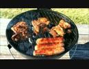 アメリカの食卓 637 アメリカで香辛料チキンを食う!