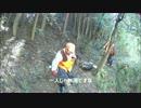 【閲覧注意】 猟犬日誌 猟師と猟犬の猪猟 Part27