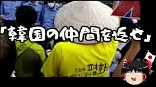 【ゆっくり保守】沖縄活動家「韓国の仲間を返せ!」
