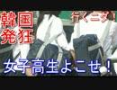 【韓国発狂ニホンの高校生に!】韓国政府赤っ恥!助けてニダ!