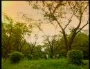 癒されたい人へ   AIR ~夏影(natukage)~ 【癒し系動画付】