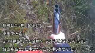 【銃猟】発砲 寒中水泳からドザエモン手前 新米猟師ハンター14