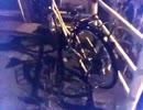 第94位:【編集なし】 自転車についてくる猫たち(='x'=)