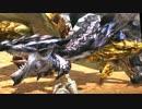 【MHX】天と地の怒りを一度も攻撃せずにク