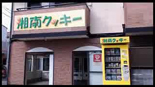 2016年02月17日 茅ヶ崎サザン通り・茅ヶ崎海岸・平塚八幡宮 周辺散歩 Part1