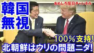 【日米同盟vs米韓同盟】 韓国が抜けてるニダ!北朝鮮はウリの問題ニダ!