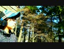 【Vivid_DAY_s /ソロ】 走れ 踊ってみた 【saka】