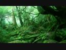 【KAITO MEIKO】森【オリジナル曲】