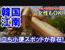 【韓国江南スタイル最先端】 立ち小便スポット存在!なんと女性もOK!