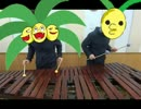 【ポケモンSM】 戦闘!島キング、島クイーン 【全部一人で叩いてみた】