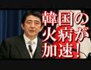 安倍内閣の主張で韓国の火病が加速する!完全に効いてるwww