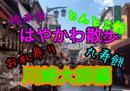 早川亜希動画#386≪はやかわ散歩、川崎大師編≫