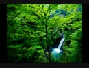 【音楽療法】水の癒し&ヒーリングサウンド/自然治癒力UP【1/fゆらぎ】