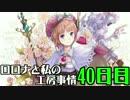 【実況プレイ】ロロナと私の工房事情【40日目】