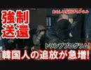 【韓国人の追放が急増】 軽犯罪でも強制送還!不法滞在だから当然だ!