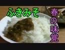 ふきのとうのお味噌