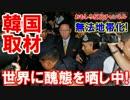 【韓国の悪民度がマレーシアで拡散】 無法地帯化で一触即発!