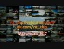 ドライブレコーダー ロシアの交通事故と緊急事態選集 No.55 2017年2月