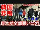 【日本が全部悪いニダ】 大使帰国から2か月!ブラックホール突入!
