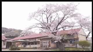 2016年04月08日 桜舞う中、廃校になった下里分校まで散歩がしたい Part3