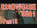 巨大な巣で少年と巨獣は出会う part13【人喰いの大鷲トリコ実況】