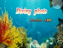 Diving photo1