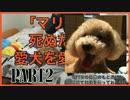 「マリオ」が死ぬたびに愛犬を愛でる男Part2【マリオメーカー実況】