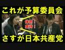 国会とはこういうもの!日本共産党 吉良よし子議員の発狂祭り!