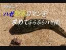 釣り動画ロマンを求めて 番外編(みなとみらい地区)