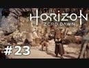 【実況】ゾイドな世界でひと狩りいこうぜ!【HZD】#23