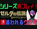 【ゼルダの伝説】シリーズ初見プレイだとこうなる【15日目】