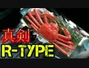 【実況】地球を救おうと思ったら滅ぼしてた【R-TYPE FINAL】