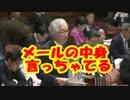 3月24日 参議院 予算委員会 西田昌司