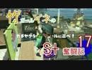 【Splatoon.19】竹ガールイネのS+奮闘記17【S+38〜】
