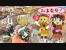 石垣島で宝石、化石探し!お宝続々発見!?<その4>