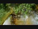 【作業用BGM】川のせせらぎと水琴窟
