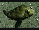 釣り動画ロマンを求めて 38釣目(ふれーゆ裏:夜釣り)