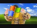Windows XPPAP